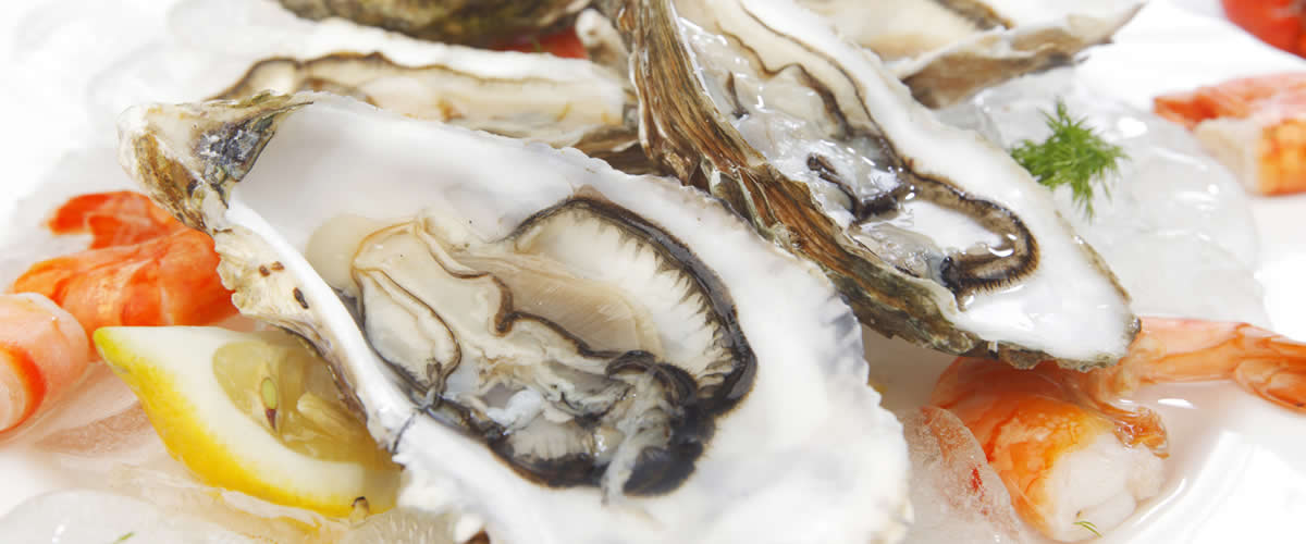 Fresh Seafood Wholesale   UK Delivery available